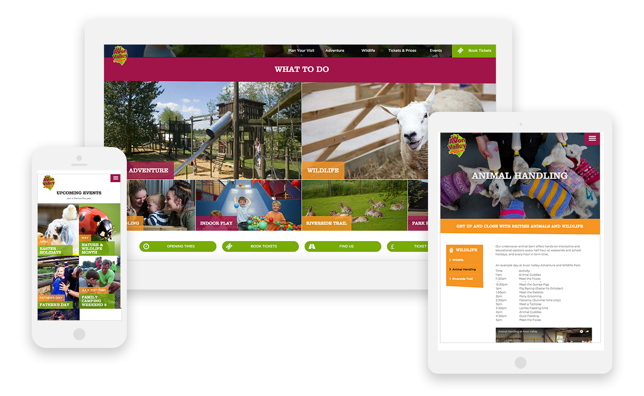 Avon Valley, Website Design and Development in Wiltshire, Bath, specialising in WordPress. Web design for adventure park