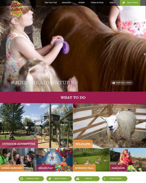 adventure park wordpress website design