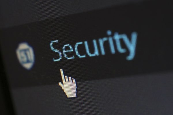 How do we ensure the security of your WordPress website?
